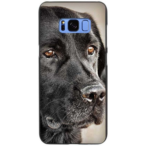 My Old Fella Labrador Retriever Silicone Phone Cases For Samsung
