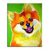 Pomeranian Multi Color Canvas Picture