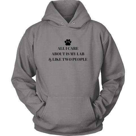All I Care About Is My Lab & Like Two People Sweatshirt Hoodie