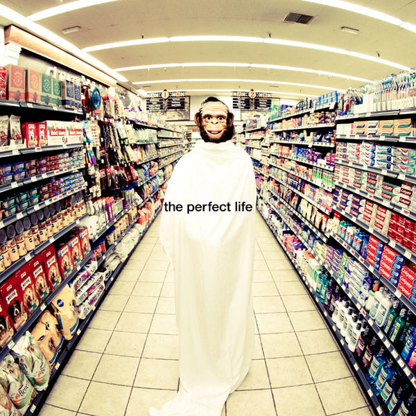 The Perfect Life (with Wayne Coyne) (Fuck Buttons Remix)