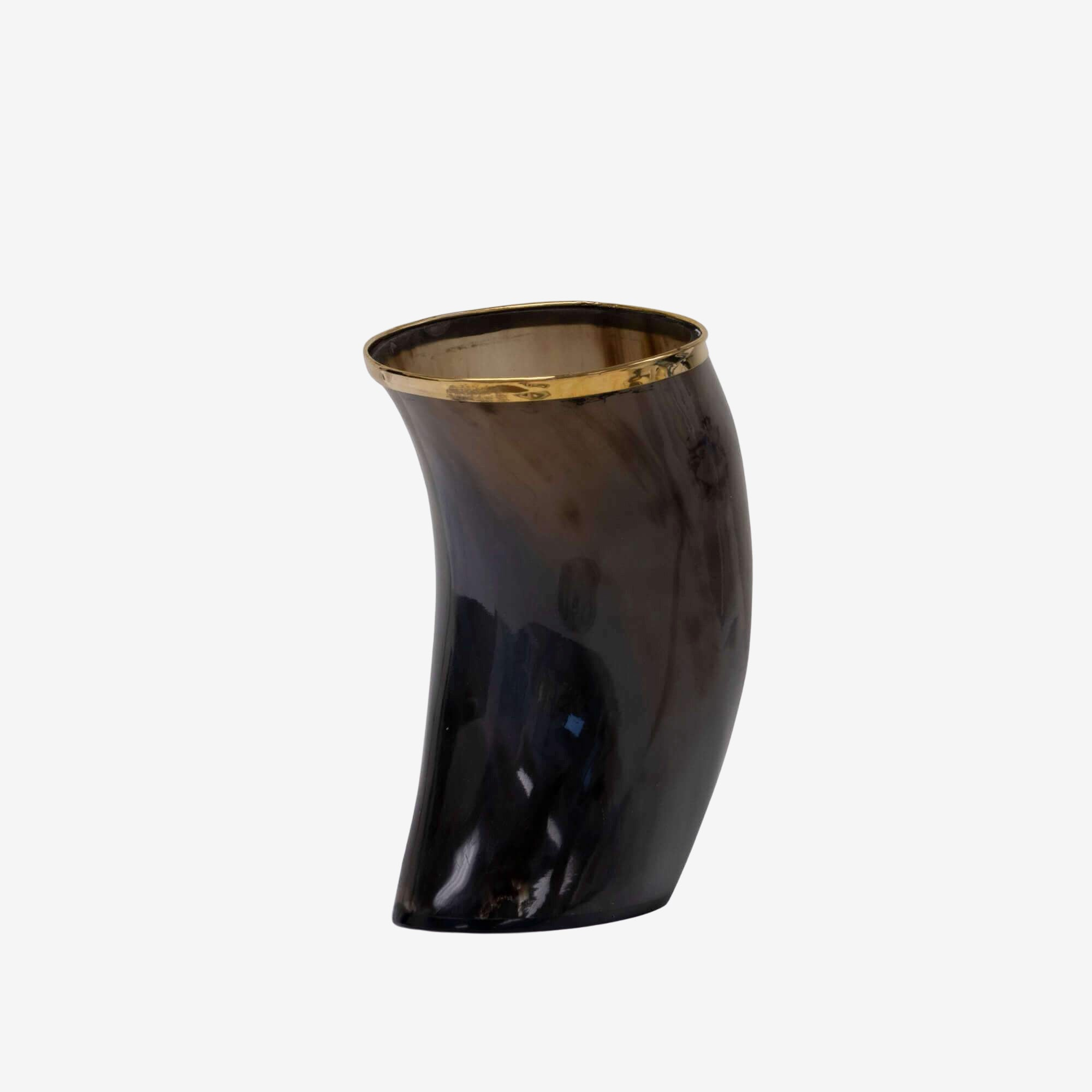 Cow Horn Vase w/ Gold Trim
