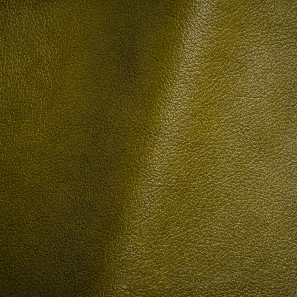 color - Steamboat Avacado Leather