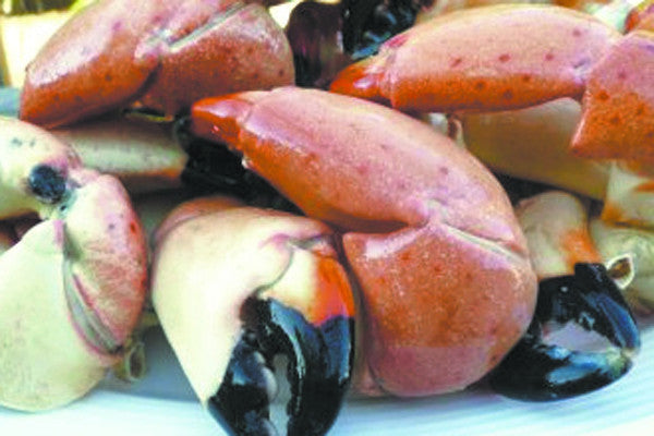 We Love those Stone Crabs!
