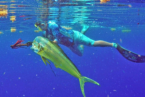 Spearfishing Dolphin - FishMonster Magazine