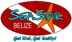 SeaStar Belize - Get wet, get salty!