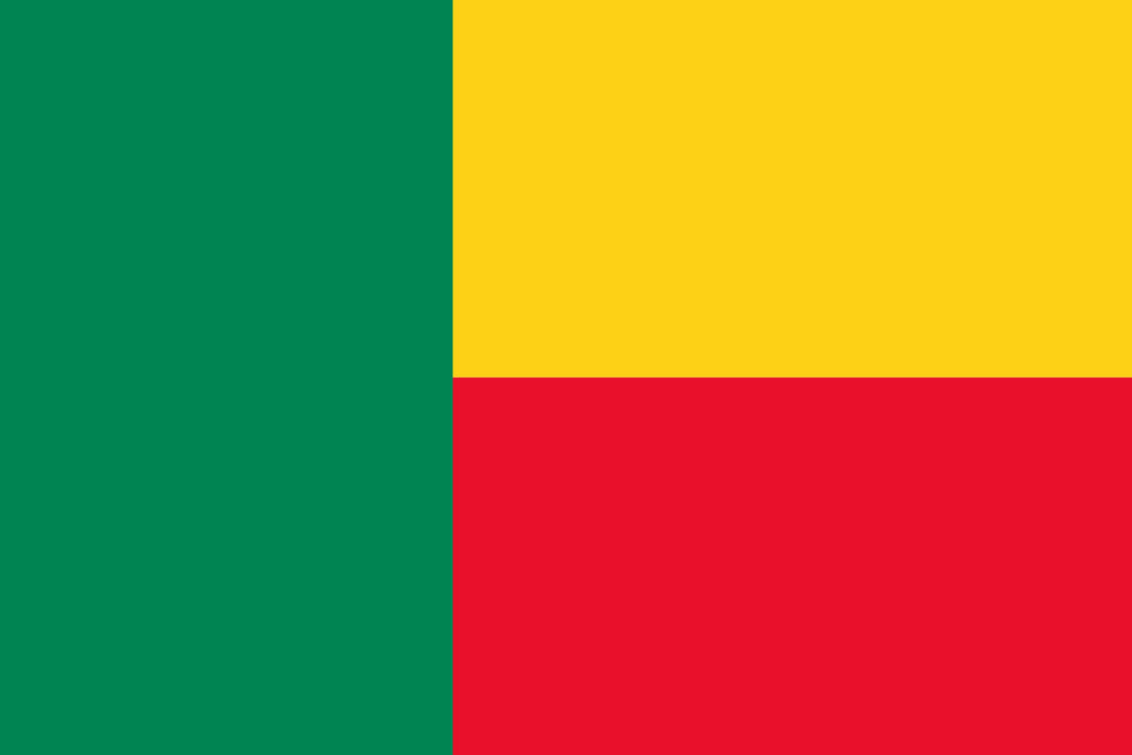 3'X5' Benin Polyester Flag West Africa French