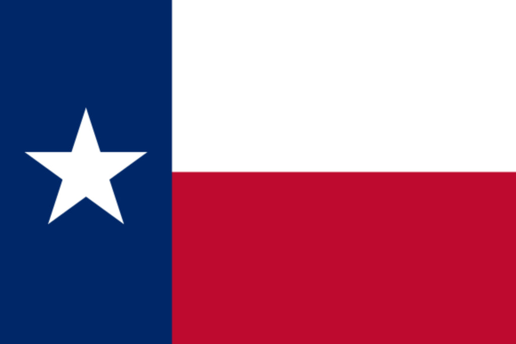 5'X8' Texas Nylon Embroidered Flag Austin Dallas