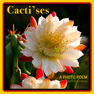 CACTI'SES: Photo Poem