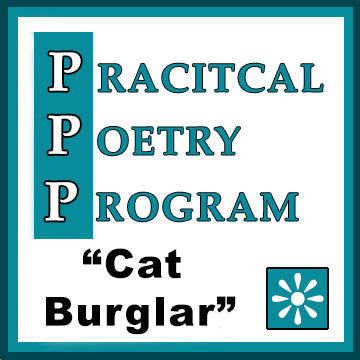 "Companion Power Point Presentation: ""Cat Burglar"""