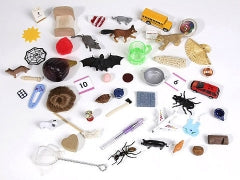 Item 201-1 Assortment of Short Phonetic objects.  Assortment will vary based on availability of items.