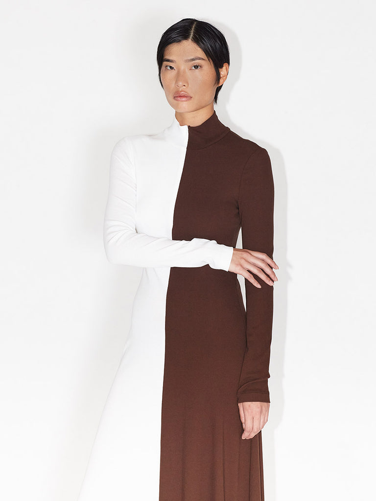 Long Sleeve Zip-Up Turtleneck Dress