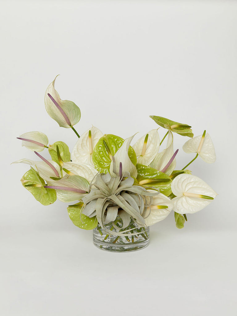 Rosetta Getty X Pretend Plants & Flowers Holiday Arrangement