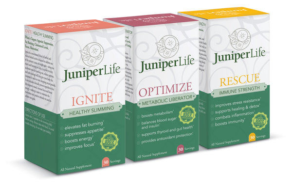 Transformation Program REFILL - IGNITE, OPTIMIZE, FORTIFY