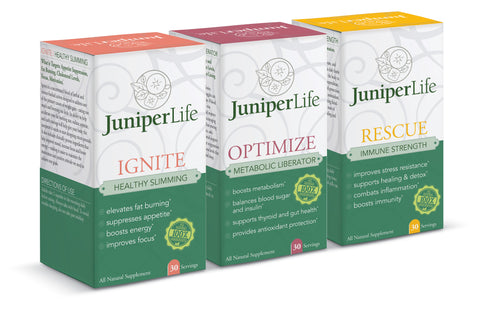 Transformation Program REFILL - IGNITE, OPTIMIZE, FORTIY