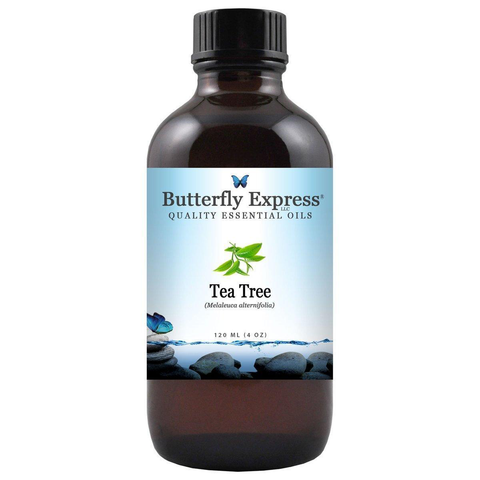 Butterfly Express Tea Tree Essential Oil