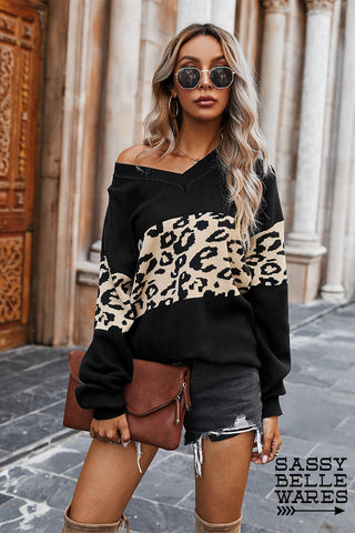 Leopard Print and Solid V Neck Sweater