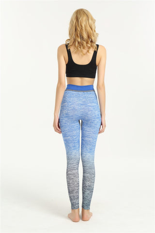 Blue High Waist Seamless Sporting Leggings for Plus-sized Women