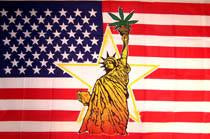 Marijuana Statue of Liberty American 3x5 Feet Flag