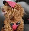 Image of Summer Canvas  Baseball Cap For Pet Dogs [10variants]