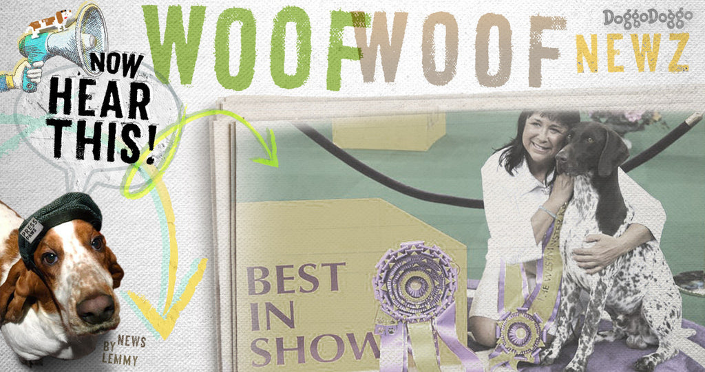 Top 8 Fun Facts about Westminster's 'Best in Show' Winner