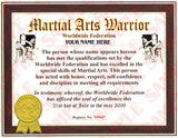 Martial Arts Warrior Certificate - MaxArmory