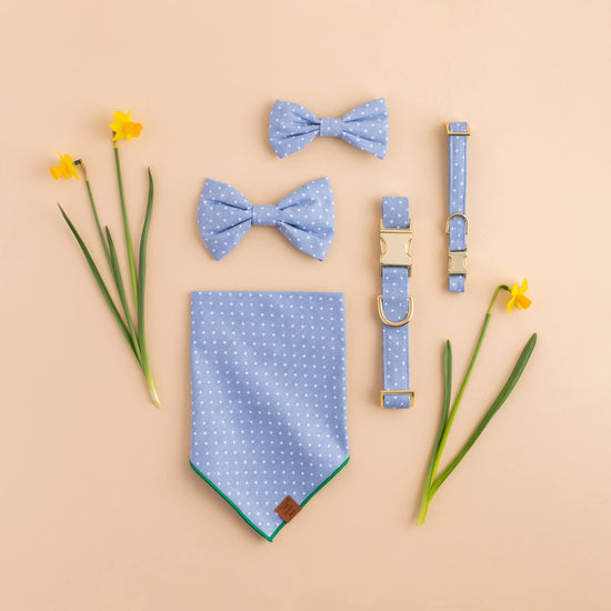 Chambray Dots Dog Bow Tie from The Foggy Dog