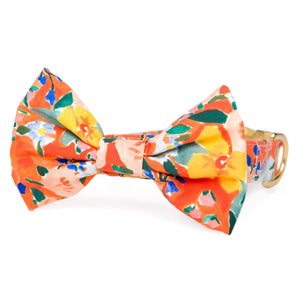 Clementine Bow Tie Collar from The Foggy Dog