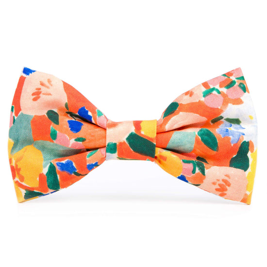Clementine Dog Bow Tie from The Foggy Dog