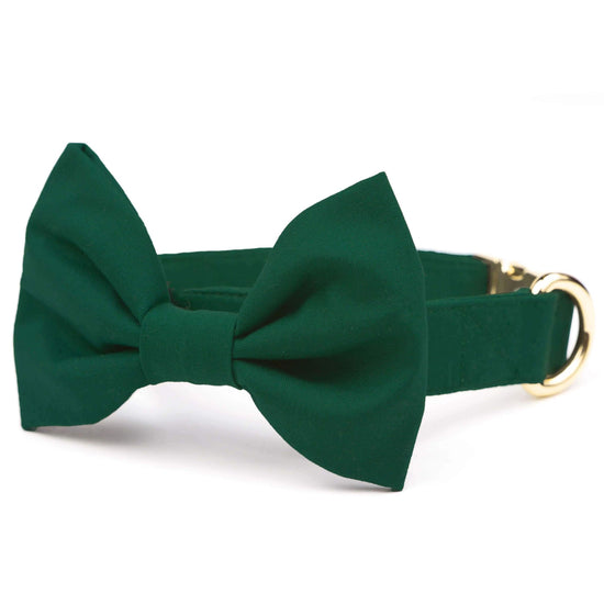 Evergreen Bow Tie Collar from The Foggy Dog