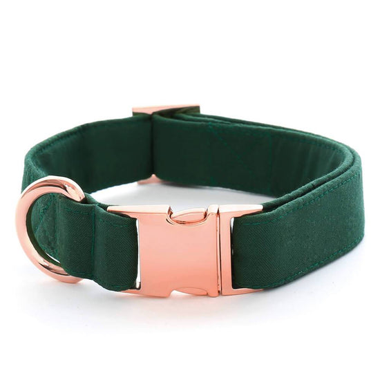 Evergreen Dog Collar from The Foggy Dog
