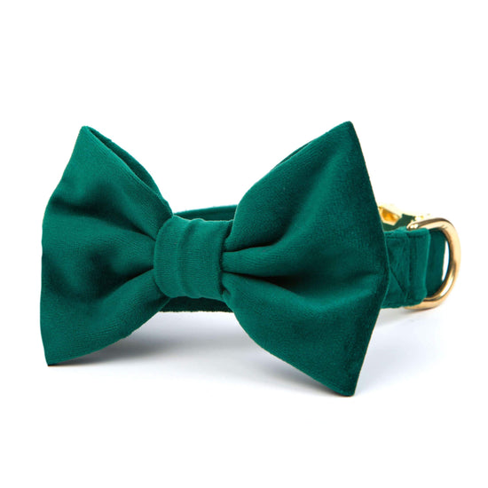 Forest Green Velvet Bow Tie Collar from The Foggy Dog