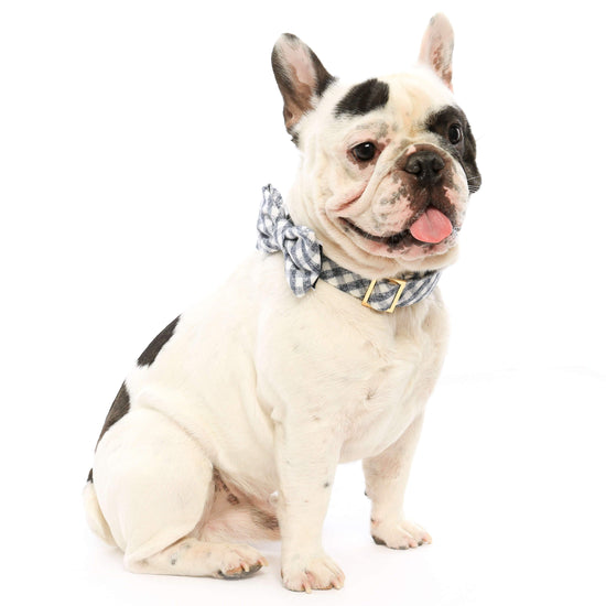 Gray and White Check Flannel Bow Tie Collar from The Foggy Dog