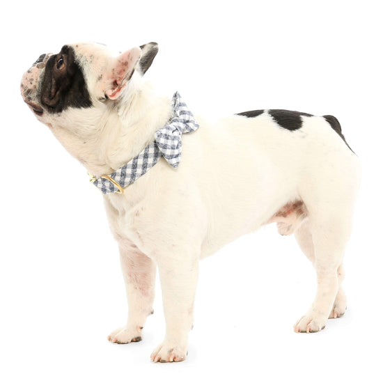 Gray and White Check Flannel Dog Bow Tie from The Foggy Dog