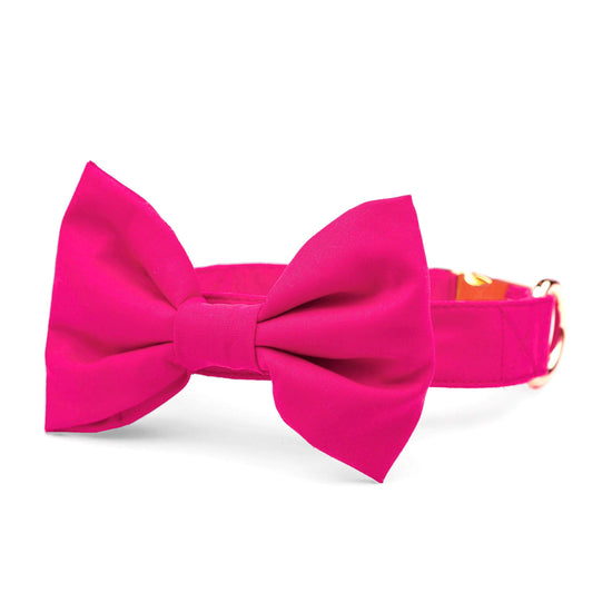 Hot Pink Bow Tie Collar from The Foggy Dog