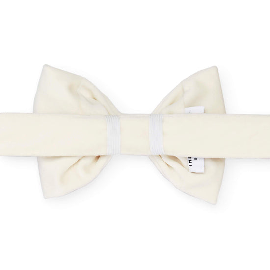 Ivory Velvet Bow Tie Collar from The Foggy Dog