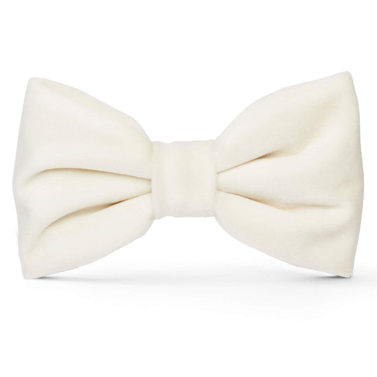 Ivory Velvet Dog Bow Tie from The Foggy Dog