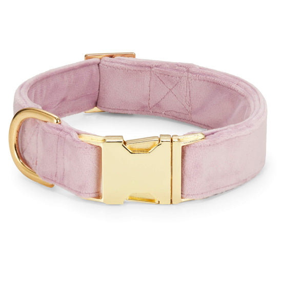 Lilac Velvet Dog Collar from The Foggy Dog