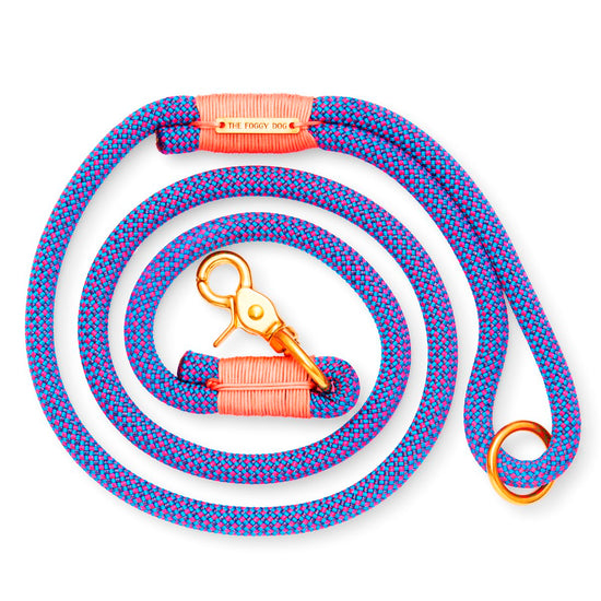 Neon Tetra Climbing Rope Dog Leash from The Foggy Dog