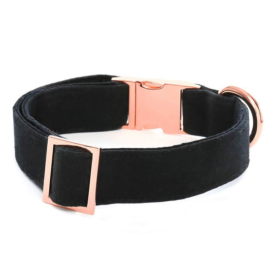 Onyx Dog Collar from The Foggy Dog