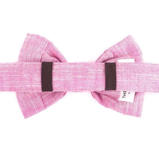 Orchid Bow Tie Collar from The Foggy Dog