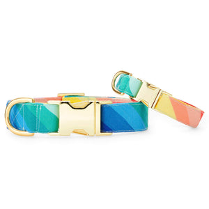 Over the Rainbow Dog Collar from The Foggy Dog