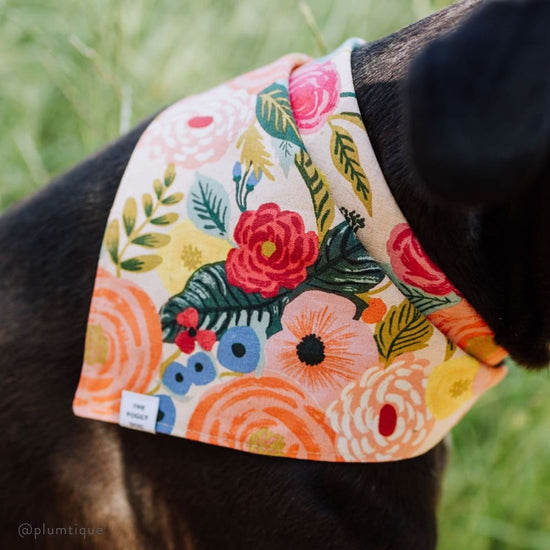 Painted Peonies Natural Dog Bandana from The Foggy Dog