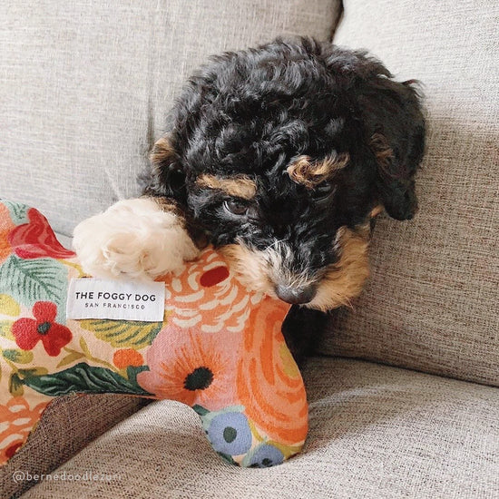 Painted Peonies Natural Dog Squeaky Toy from The Foggy Dog