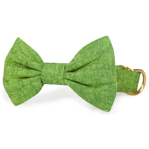 Palm Bow Tie Collar from The Foggy Dog