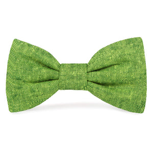 Palm Dog Bow Tie from The Foggy Dog