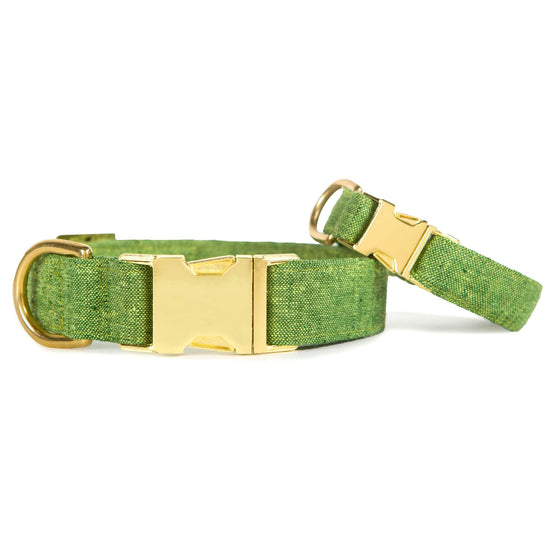 Palm Dog Collar from The Foggy Dog