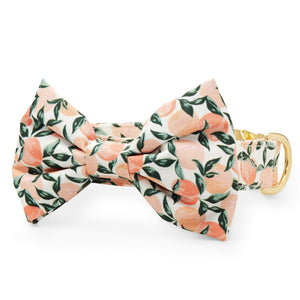 Peaches and Cream Bow Tie Collar from The Foggy Dog