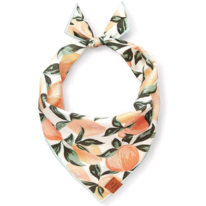 Peaches and Cream Dog Bandana from The Foggy Dog