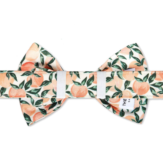 Peaches and Cream Dog Bow Tie from The Foggy Dog