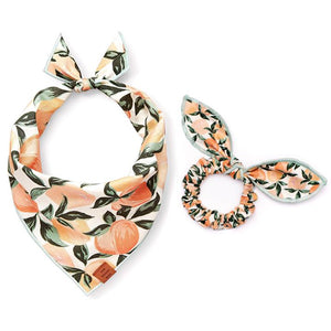 Peaches and Cream Scrunchie and Bandana Set from The Foggy Dog